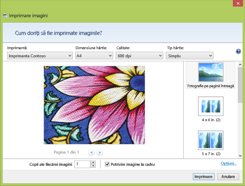 Caseta de dialog Imprimare imagini